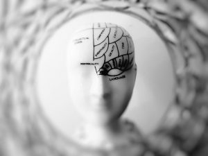 Nya studier – hjärnans intensiva koppling till tarmen